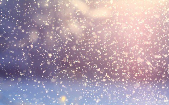 duurzame-winterjas